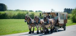 chariot_a_fondue