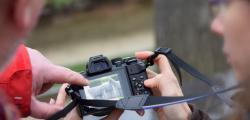 atelier photo réseau sequoia