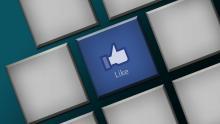 articles partagés sur les réseaux sociaux par Sequoia Ways