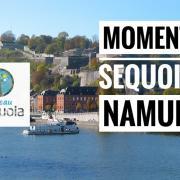 Moment Sequoia Namur